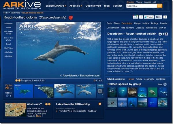 arkive species page